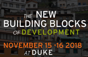 New Building Blocks of Development image