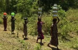 Indian women carrying water