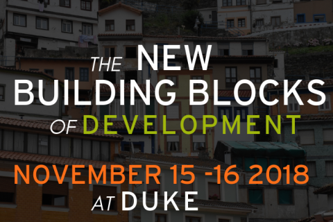 New Building Blocks of Development image