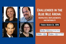 Challenges in the Blue Nile Arena: Geopolitics, Displacements, and Instability. Duke Center for International and Global Studies.